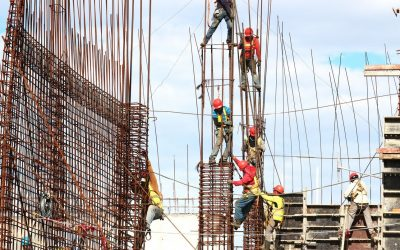 Building Law reforms: Raising the bar across the sector